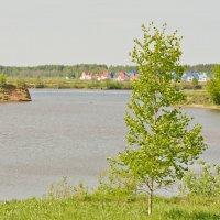 Волжский залив. :: Виктор Евстратов