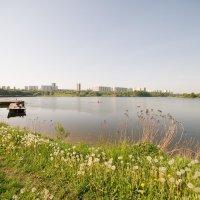 Утро в столице :: Sergey Polovnikov