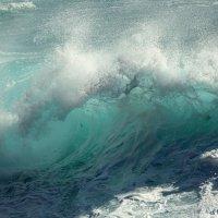Океан любви ... :: CHAIKA '