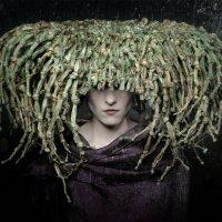 Herbs :: Kirill Rotulo