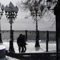 Снег пошёл! :: Владимир Шошин