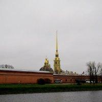 Петропавловская крепость :: Ольга Иргит