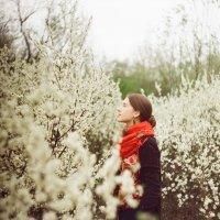 Второе дыхание весны :: Евгения Ель