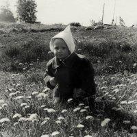 одуванчик-time :: sv.kaschuk
