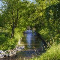 ,,дважды в одну реку не войдешь...'' :: Лариса Н