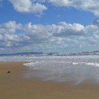 море весеннее пляж :: Марина