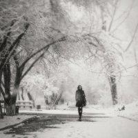 Последний зимний, апрельский снег (Урал) :: Антон Оленин