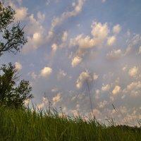 Летели облака :: Stas Storcheus