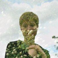 Пора цветения :: Дмитрий Ромашев