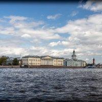 СПб., В.О. :: Евгений Никифоров