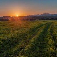 Полевая дорожка к закату :: Эдуард Ефремов