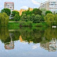 Отражение весны :: Наташа С