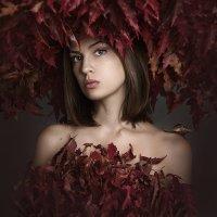 Осень :: Лера Лукащук (Lera Luka)