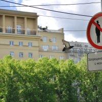 С незнакомцами водиться замечательно опасно... :: Ирина Данилова