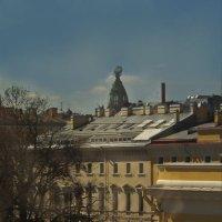 Вид из окна Русского музея. :: Наталья Осипова(Копраненкова)