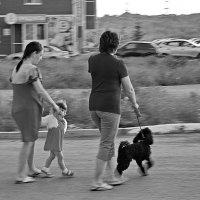 Девочка и чёрный пудель :: Арсений Корицкий
