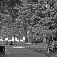 Пружанский парк :: Mister FoX