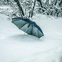 Зонтик,а; камера осталась без защиты.... :: Александр Сендеров
