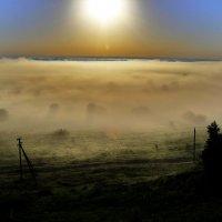 туманное утро :: Вадим Виловатый