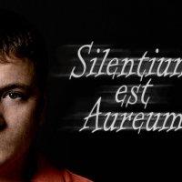 Молчание золото :: Александр Лукин