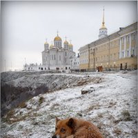 Cогреваясь, созерцаю! :: Владимир Шошин