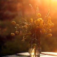 дачный... когда садилось солнце.. :: Ирина Лепихина