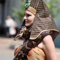 Царица Египта. :: Vit Falcone