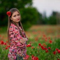я и маки :: Наталья Дари