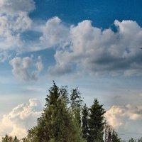 Высокий облак надо мной кочует..... :: Sergey Serebrykov