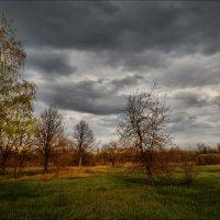 Тяжелое хмурое небо.. :: Татьяна Кретова