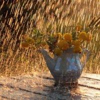 дачный.. под солнечным дождем.. :: Ирина Лепихина