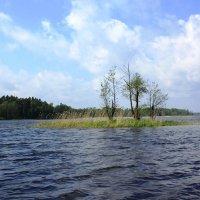 Островок на Вуоксе. :: Ирина