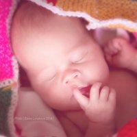 Newborn. :: Elena Lonskaya