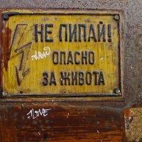 НЕ ПИПАЙ! :: Дмитрий Близнюченко