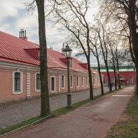 Петропавловская крепость :: Дамир Белоколенко