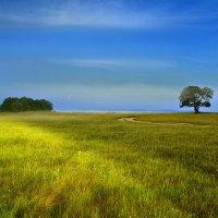 Я видел, как звенели травы по утру... :: Александр | Матвей БЕЛЫЙ