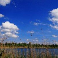 Озеро, природа.. :: Антонина Гугаева