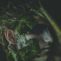 Лесной житель :: Любовь Kozochkina