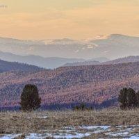 Рассвет на Семинском перевале. :: Галина Шепелева