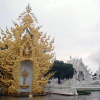 Рядом с Белым храмом :: Сергей Карцев