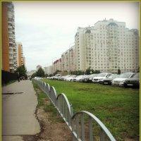 Москва Жулебино :: Ольга Кривых