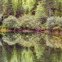Озеро Соболиное :: Ричард Петров