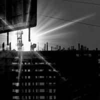 городское :: Влада Ветрова