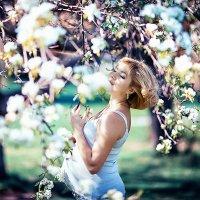 Новая весна :: Наталья Коледа