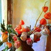 Цветы :: Маруся Маруся