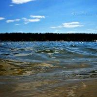 Озеро Нажицы :: Кристина Щукина