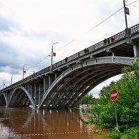 Мост через Бию.Большая вода 2014 года. :: Владимир Михайлович Дадочкин