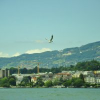 Монтро, Швейцария :: Hanna Rzh
