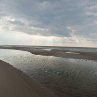 Балтийский берег Куршская коса :: Ирина Шарапова
