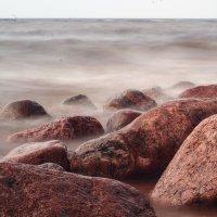На заливе :: Александр Викторенков